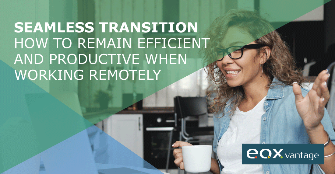 stay productive and efficient while working remotely