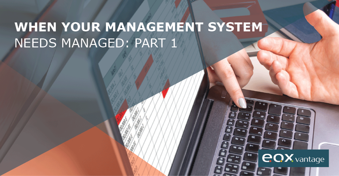 Agency Management System - AMS